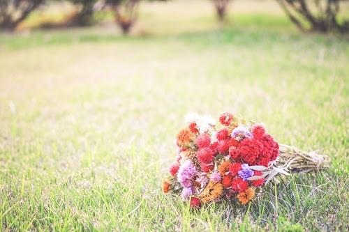 草原に花束